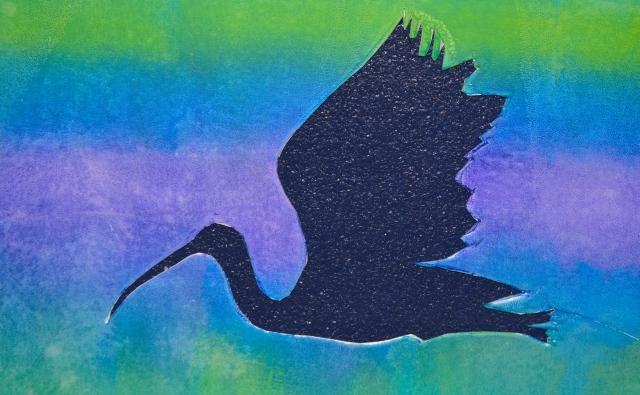 negative scarlet ibis